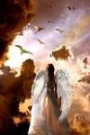 Heaven's Calling
