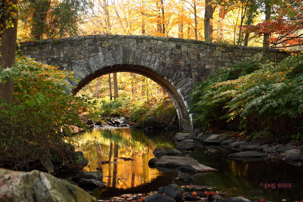 Fall Morning 2013 Bridge 1 by caillteone