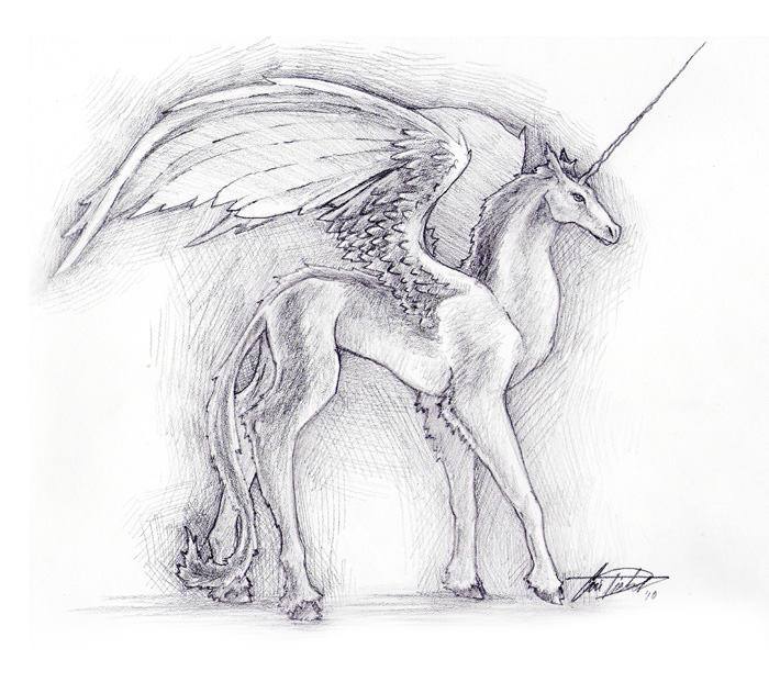 Alicorn On Pinterest Twilight Sparkle Princess