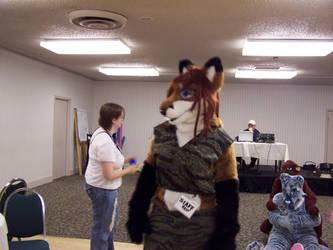More All Fur Fun