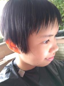 Rexy2000's Profile Picture
