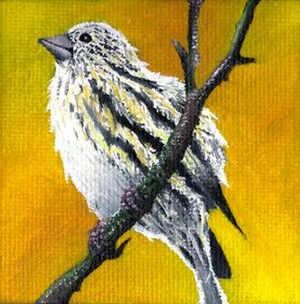 Tiny Birdie #3 by PhotonLights