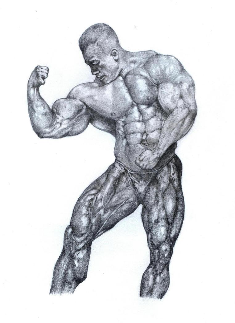 bodybuilding by romaxa11