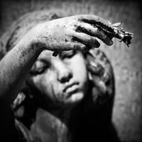 Reverie by Herculanum