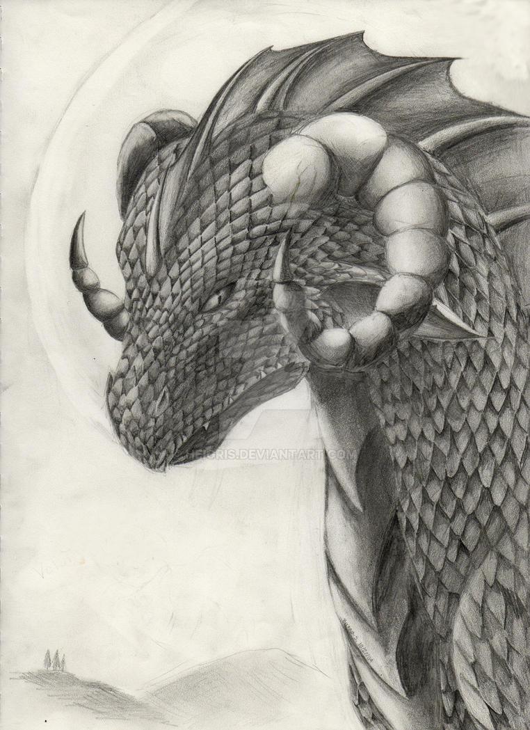 Volund, Saiyu's Dragon by Heigris