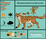 Cheetahstar | Reference Sheet by TheWrathofEnvy