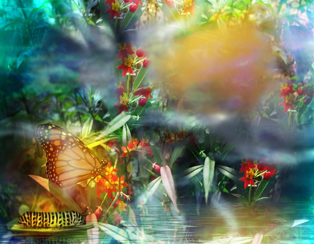 Printempspapillon by roserika