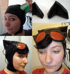 Catwoman Headgear