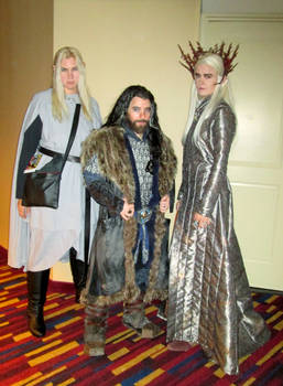 Thorin Oakenshield and his elf posse