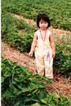 Strawberry patch kid