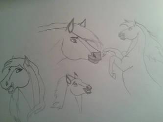 Spirit Stallion and Mom