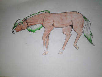Bay horse - Green
