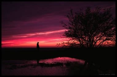 At The Soundless Dusk