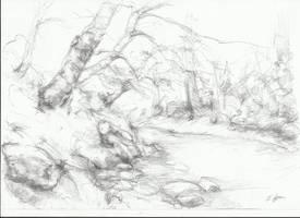 Landscape... by EsraAysu