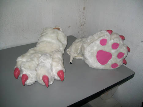 Felicia paws