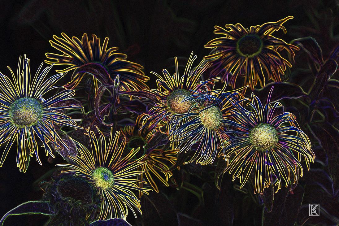 Fluorescent Flora by BrandonKingArt