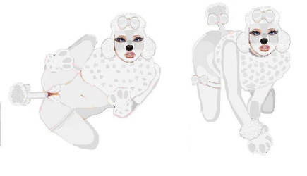 White Poodle Bitch Reclining by Nomad1978