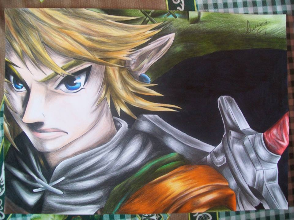 Link from the Legend of Zelda (twilight princess) by Tenemur
