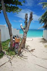 Lanikai Bike by Subastral