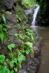 Oahu Waterfall by Subastral