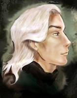 Malfoy senior by Linnpuzzle