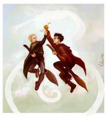 Quidditch rivals by Linnpuzzle