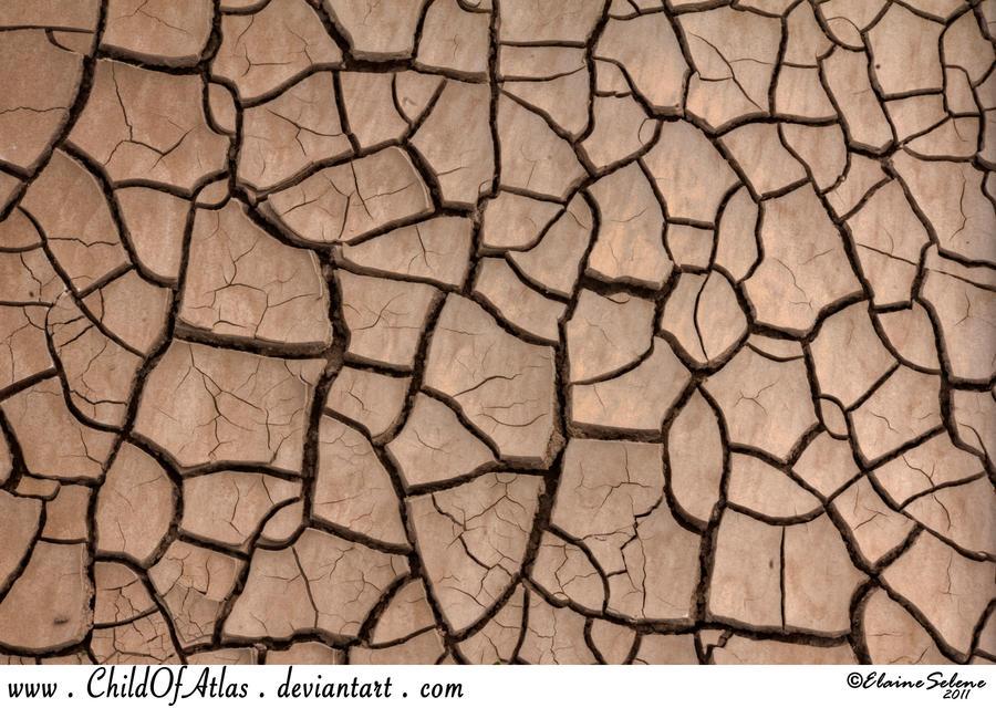 Cracked Dirt Texture - 1 by ElaineSeleneStock.