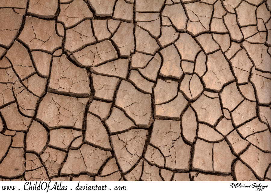 Cracked Dirt Texture - 1