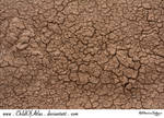 Cracked Dirt Texture - 2
