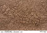 Cracked Dirt Texture - 2 by ElaineSeleneStock