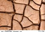 Cracked Dirt Texture - 3