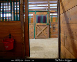Stable Stock - 1 by ElaineSeleneStock
