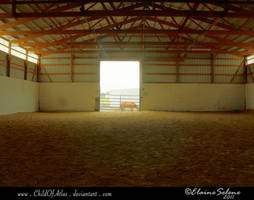 Stable Stock - 4 by ElaineSeleneStock