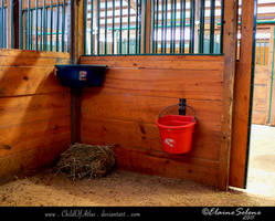 Stable Stock - 9 by ElaineSeleneStock
