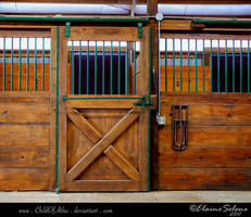 Stable Stock - 10 by ElaineSeleneStock