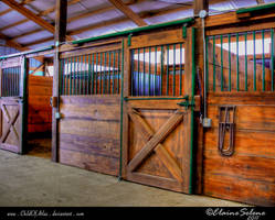 Stable Stock - 11 by ElaineSeleneStock