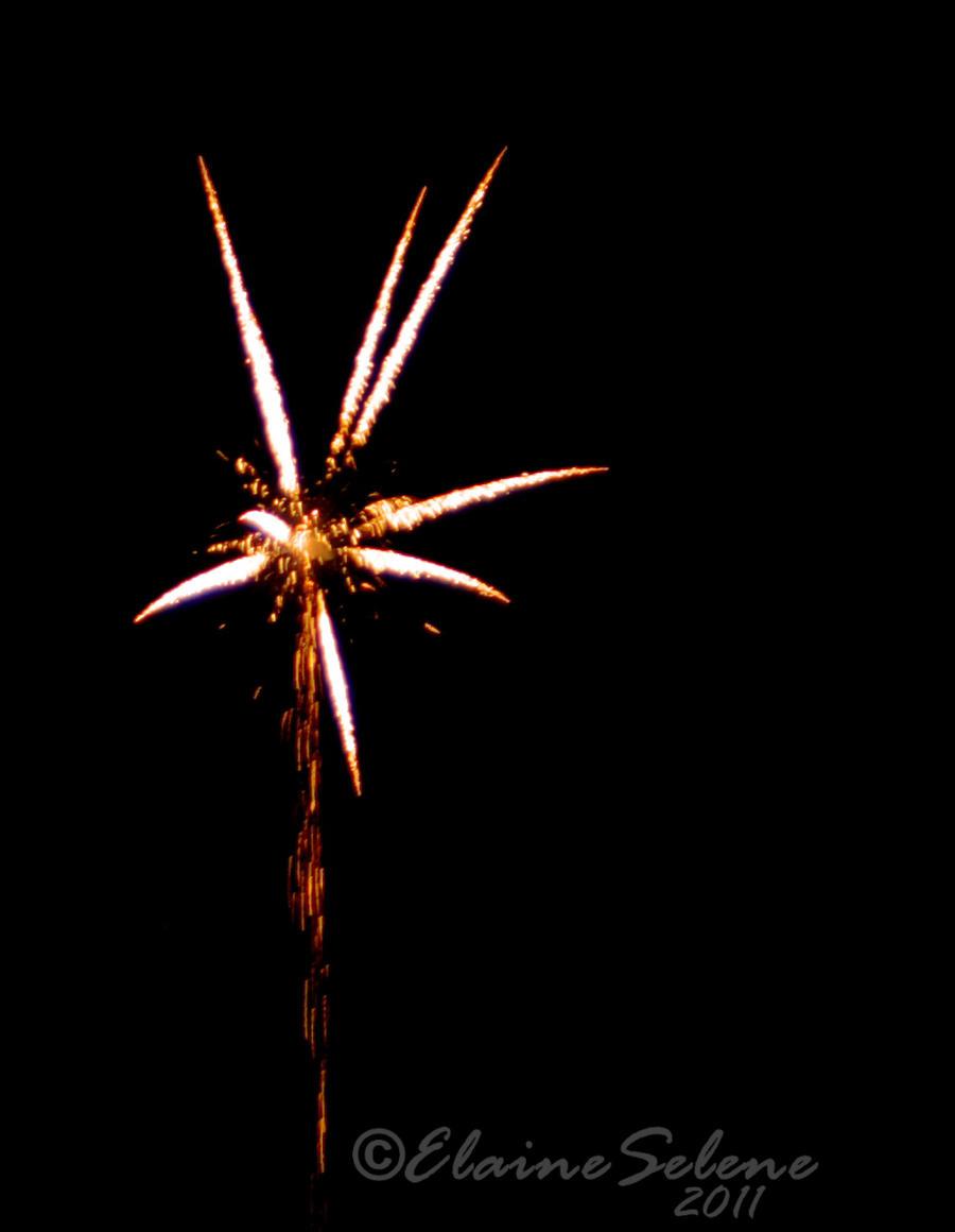 Fireworks - 17 by ElaineSeleneStock