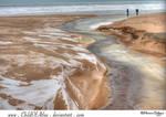 Indiana Dunes - 1