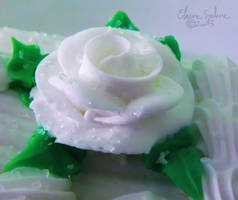 Cake and Frosting - Old - 1
