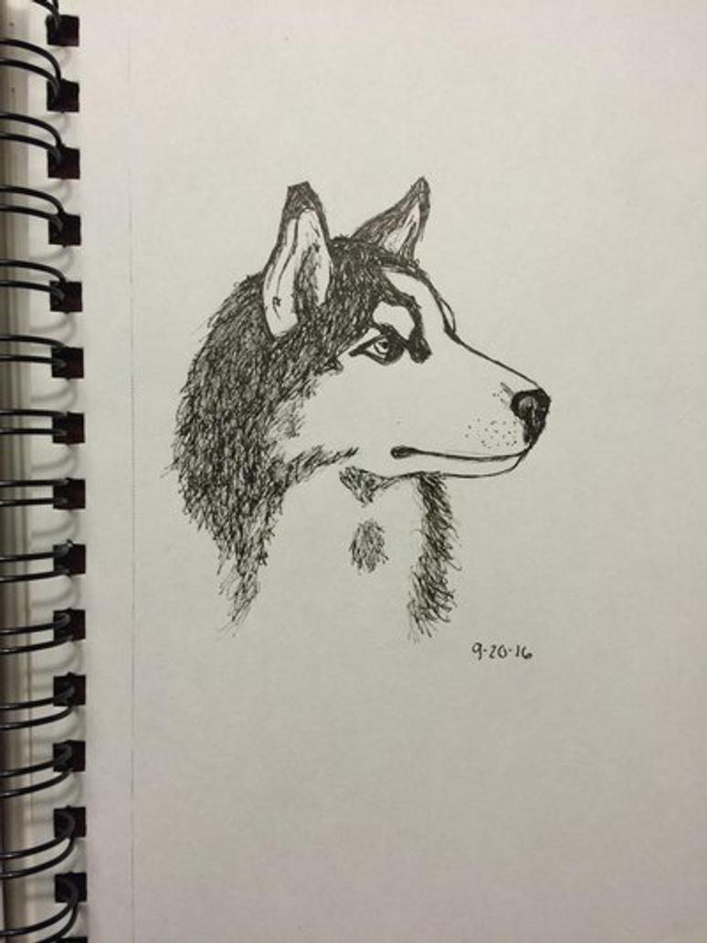 Husky portrait by SoulBeats232