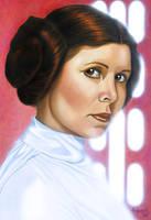 Star Wars portraits: Leia by vividfury