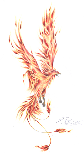 Phoenix Tatto by GisaPizzatto