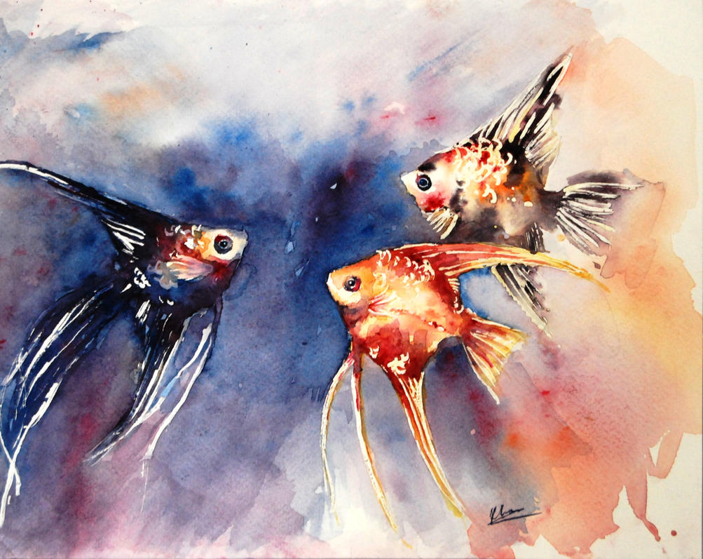 Angel fish by deepblueeyesz on deviantart for Watercolor fish painting