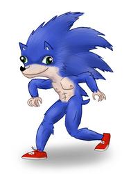 Sonic Movie concept art by Secksy-sensei
