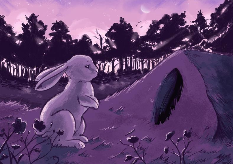 Brown Rabbit White Rabbit page 7 by MySweetPhantom