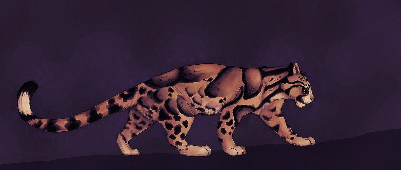 Akeli by Masked-lion