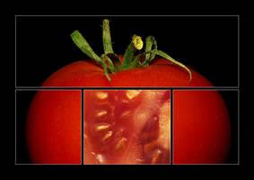 look inside by selester
