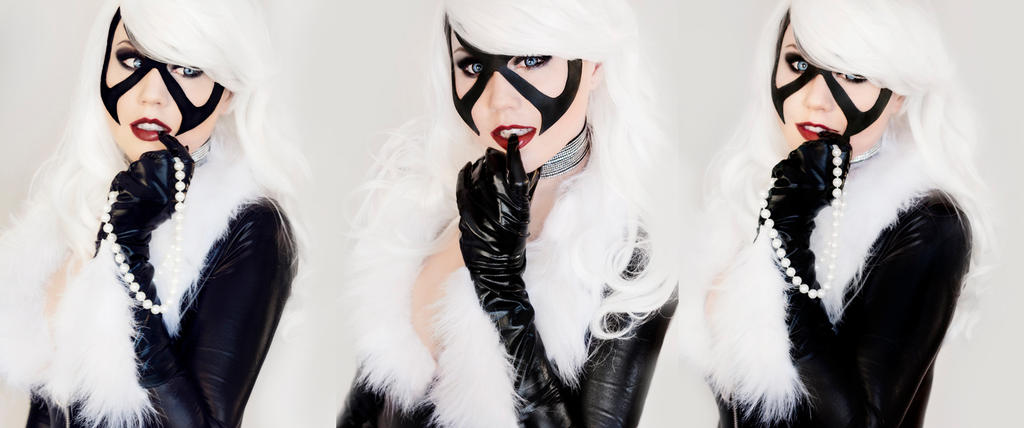 Black Cat Banner by lilwolf-xo