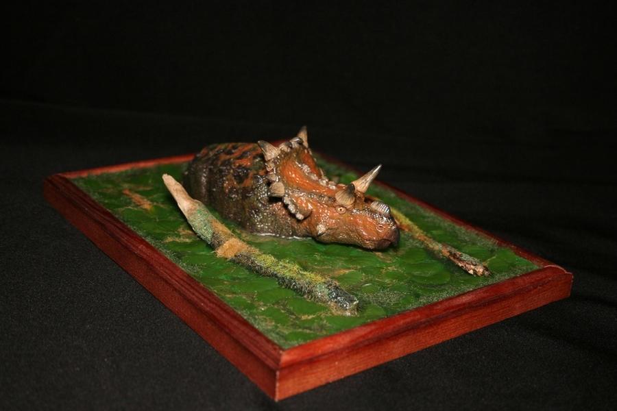 Xenoceratops foremostensis by Maastriht123 on DeviantArt