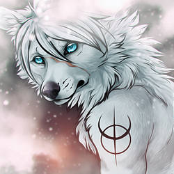 Son Of Winter And Stars, by WhiteSpiritWolf by Balasch